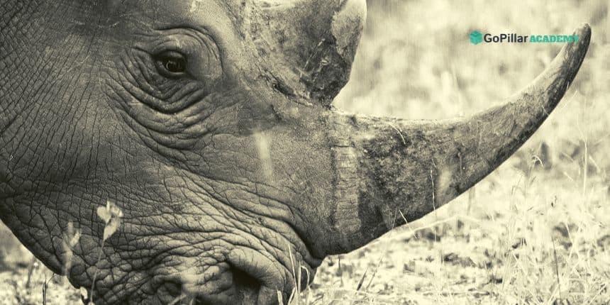 Modellazione tridimensionale per architettura e design con Rhino 3D